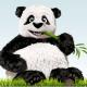 Онлайн сервисы и программы для сжатия изображений